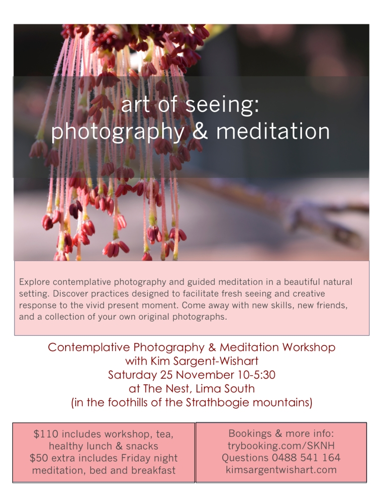 photo and meditation workshop flyer