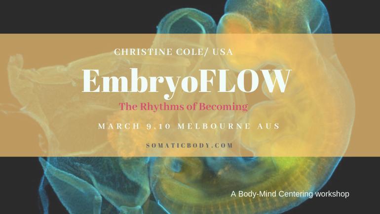AUS 2 2019 EmbryoFLOW
