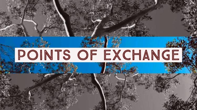 Points of exchange.jpg