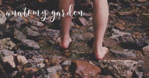 Anatomy Garden Feet Copy