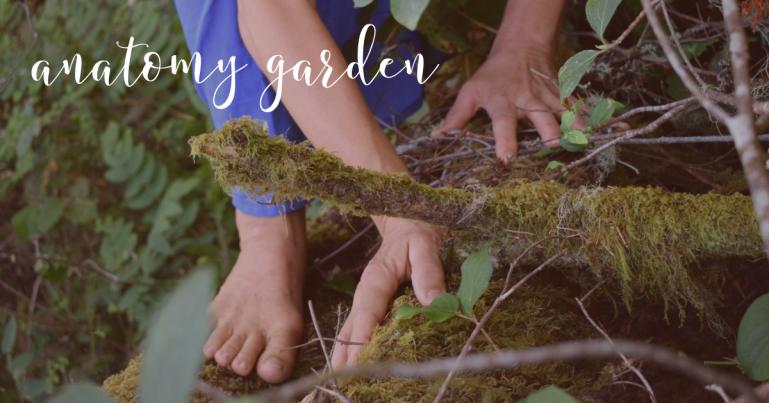 Anatomy Garden Feet Copy.png